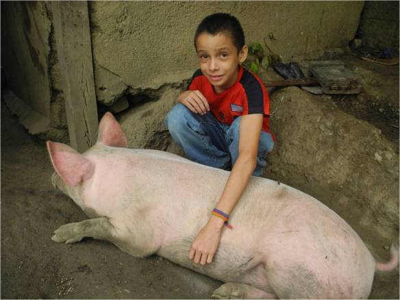 Josue, 10, lives with his family in Nicaragua, where he helps his mother look after their pigs and chickens. Picture: Tania Dalton/CAFOD