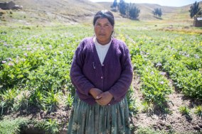 CAFOD Harvest Fast Day Bolivia 'Will you join Nicanora on a two-year journey to transform her life?' Get Hands On with the Altiplanov people join the journey