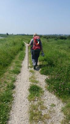 Ann Milner walking around the London LOOP to add her miles to CAFOD Share the Journey walk around the world in solidarity with refugees.